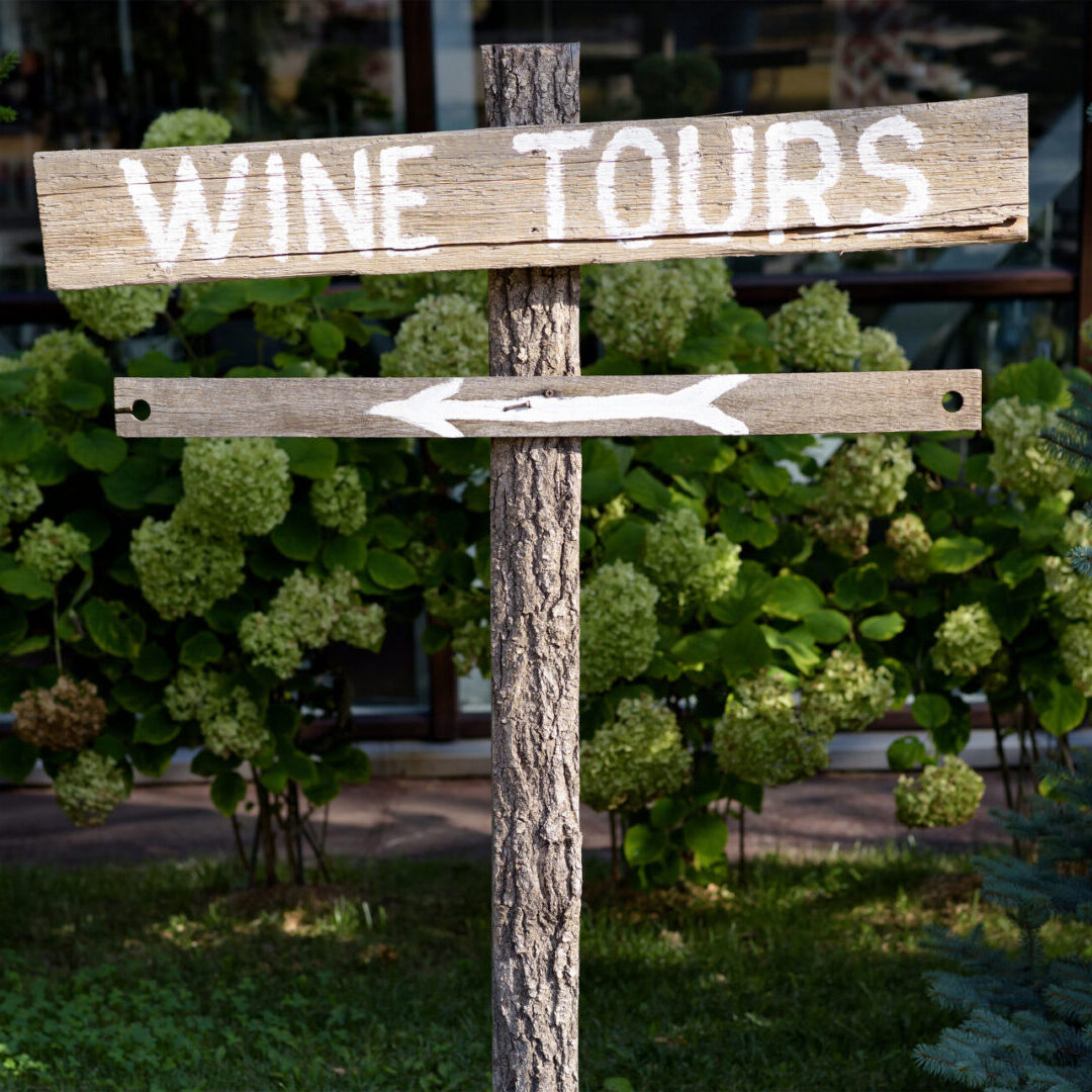 Wooden wine tour sign with arrow with green shrubs on background
