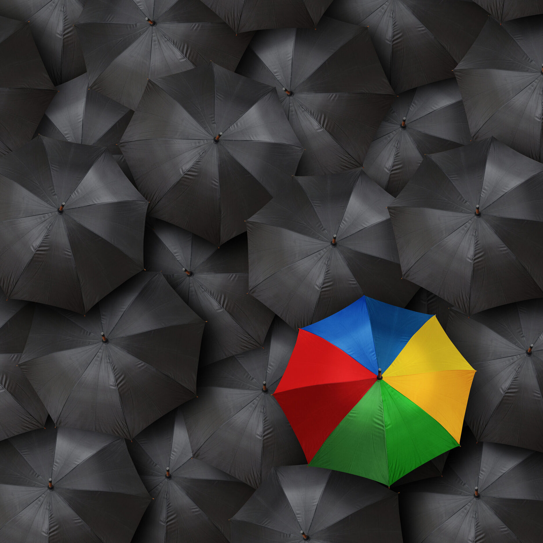 concept for leadership with many umbrellas and one colorful